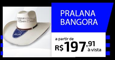 Mini Banner - chapéu bangora