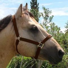 Cabresto Boots Horse Nylon Marrom BH-41