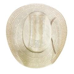Chapéu Resistol Importado 20x Brett